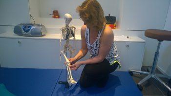 Permalink to: Anatomie – niet alleen voor….Op 12 november weer in Sassenheim!!!