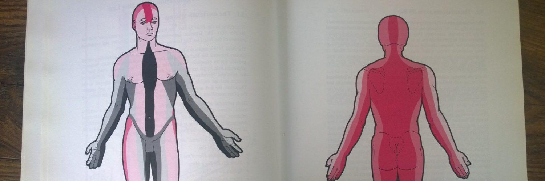 Anatomie in actie